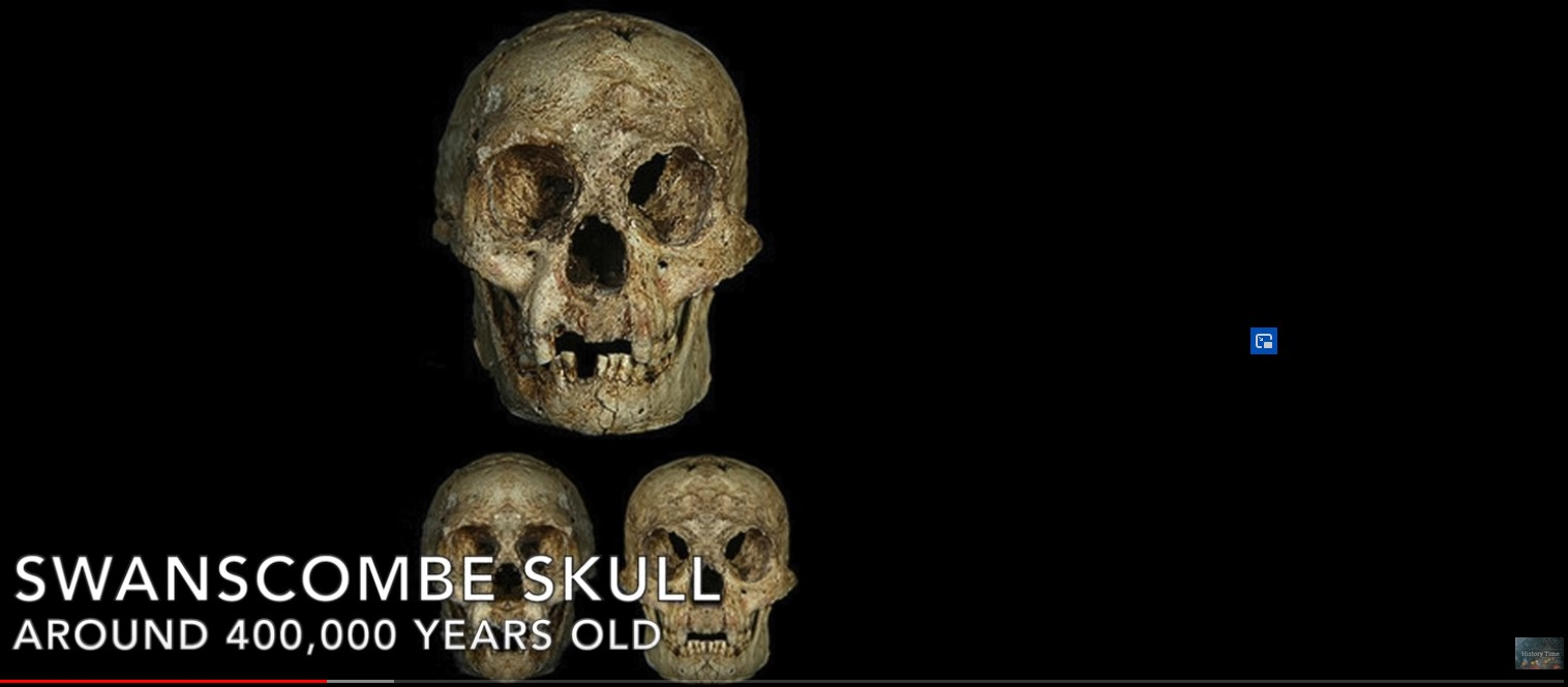 Screenshot 1swanscombe skull