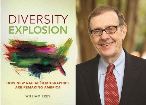 diversity explosion book