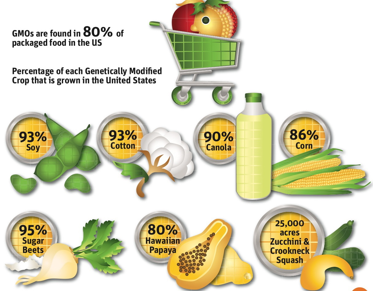 GMOS Percentages Monsanto