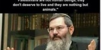 Jew said, Palestinians are not human beings.