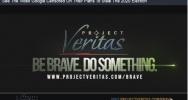 Project Veritas Organization