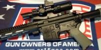 Gun Organizations