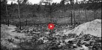 The Katyn Massacre Update 2