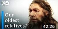 The White Neanderthals
