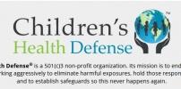 The Defender Organization Update 2.