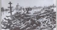 White European Holocaust, Update 11
