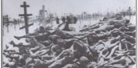 White European Holocaust, Update 12
